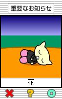 花ちゃん0031.png